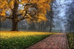 spalvingos-rudens-nuotraukos-013